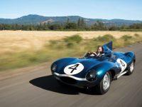Jaguar D Type - 1955